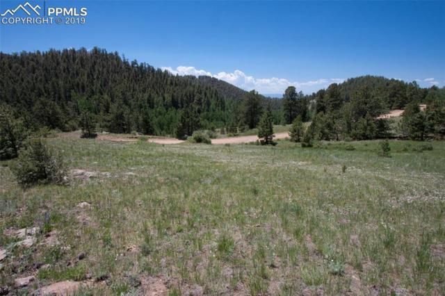 1786 Penrose Circle, Cripple Creek, CO 80813 (#8066179) :: The Peak Properties Group