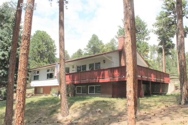 19465 Broken Fence Way, Monument, CO 80132 (#8069356) :: Finch & Gable Real Estate Co.