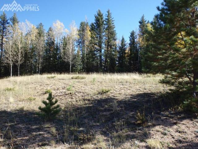 126 Bear Claw Trail, Divide, CO 80814 (#8070565) :: Jason Daniels & Associates at RE/MAX Millennium