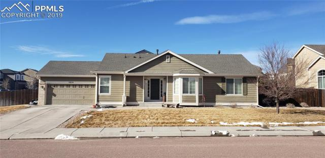 2074 Bobcat Valley Court, Monument, CO 80132 (#8073511) :: The Daniels Team