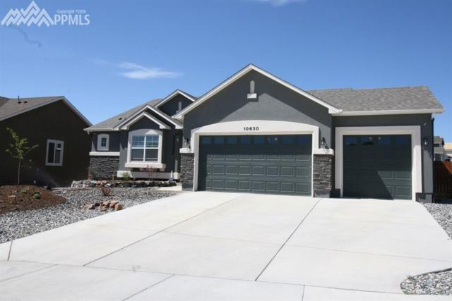 10630 Rainbow Bridge Drive, Falcon, CO 80831 (#8074034) :: The Treasure Davis Team