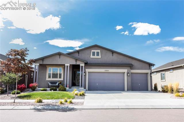 10664 Forest Creek Drive, Colorado Springs, CO 80908 (#8082215) :: Tommy Daly Home Team