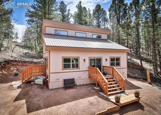 3550 Wildhorn Road, Florissant, CO 80816 (#8082447) :: Venterra Real Estate LLC