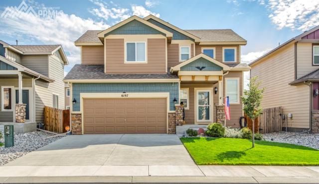 6197 Wood Bison Trail, Colorado Springs, CO 80925 (#8083591) :: 8z Real Estate