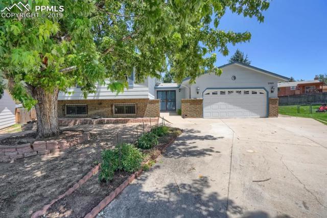 2960 Del Rey Plaza, Colorado Springs, CO 80918 (#8086920) :: Tommy Daly Home Team