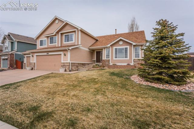 588 Fox Run Circle, Colorado Springs, CO 80921 (#8097485) :: The Kibler Group