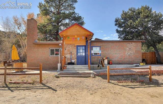 9236 Highway 50, Howard, CO 81223 (#8097503) :: Finch & Gable Real Estate Co.