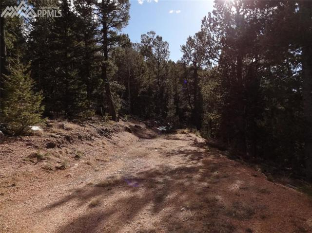 81 Haven Road, Divide, CO 80814 (#8098319) :: Finch & Gable Real Estate Co.