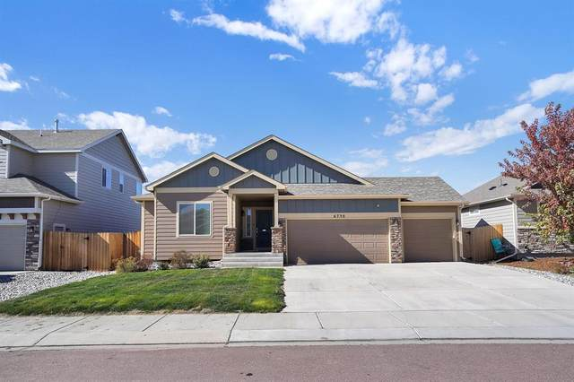 6730 Phantom Way, Colorado Springs, CO 80925 (#8103885) :: Venterra Real Estate LLC