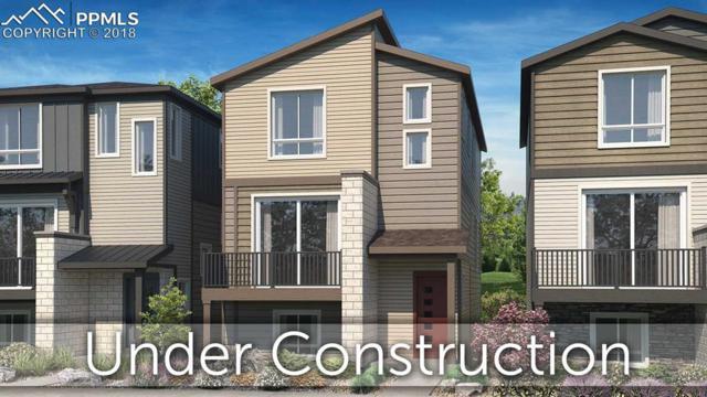 1376 Plentiful Drive, Colorado Springs, CO 80921 (#8104800) :: Venterra Real Estate LLC