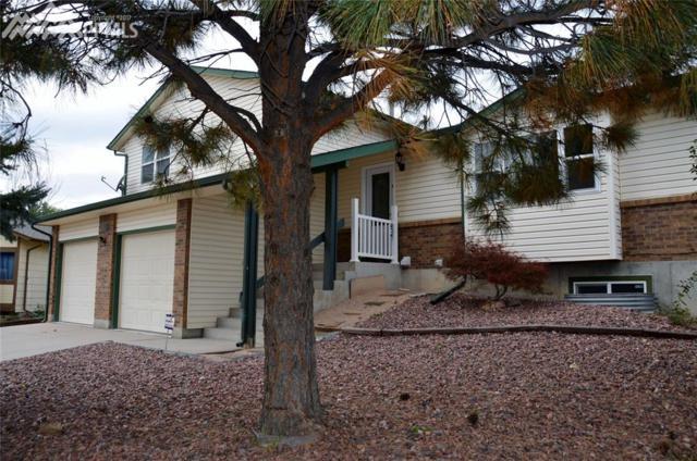 7425 Foxglove Court, Colorado Springs, CO 80911 (#8105908) :: 8z Real Estate