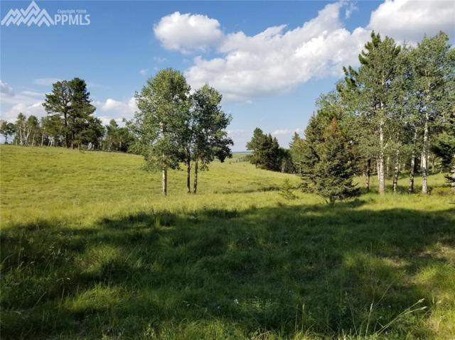 TBD Highway 67 Highway, Divide, CO 80814 (#8108556) :: The Treasure Davis Team