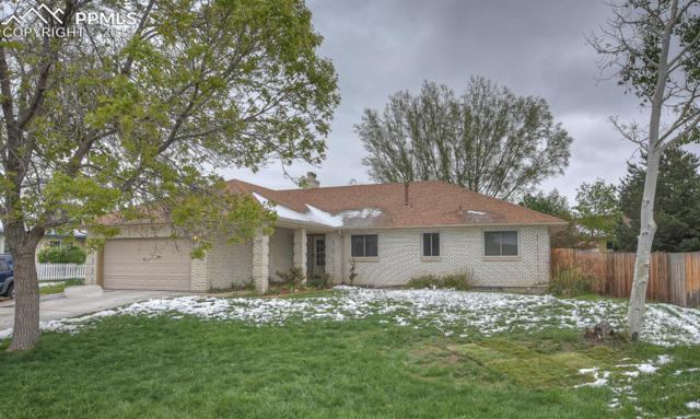 2145 Sather Drive, Colorado Springs, CO 80915 (#8110396) :: Fisk Team, RE/MAX Properties, Inc.