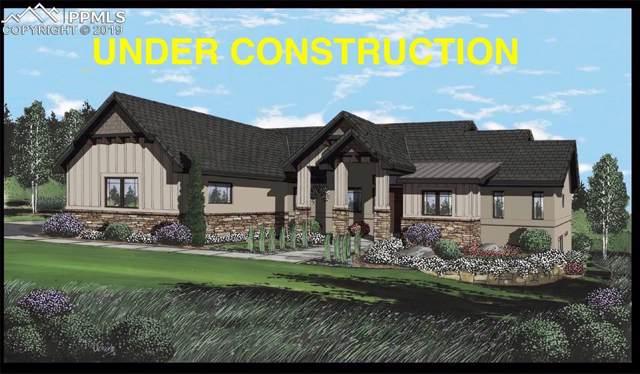 3640 Blue Heron Spring Lane, Colorado Springs, CO 80908 (#8111328) :: The Daniels Team