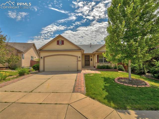 3729 St Simons Court, Colorado Springs, CO 80920 (#8112679) :: Dream Big Home Team | Keller Williams