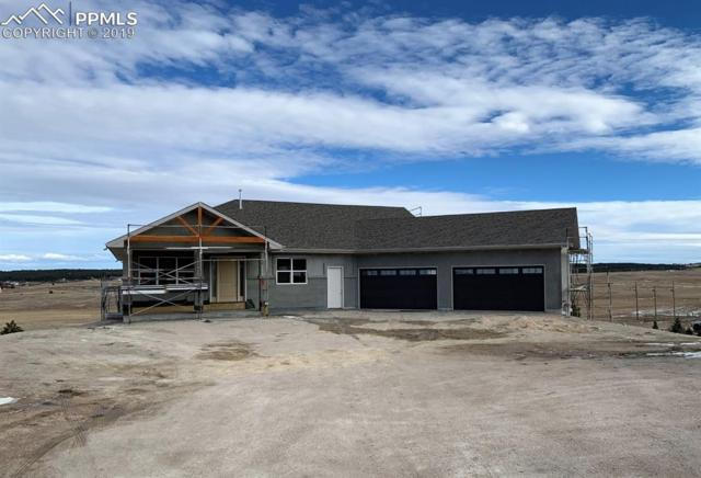 19353 Queens Crescent Way, Monument, CO 80132 (#8117570) :: Action Team Realty