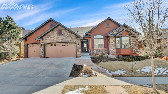 1141 Spectrum Loop, Colorado Springs, CO 80921 (#8119036) :: The Hunstiger Team