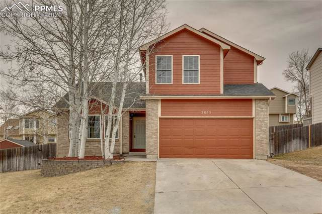 2855 Warrenton Way, Colorado Springs, CO 80922 (#8119765) :: Tommy Daly Home Team