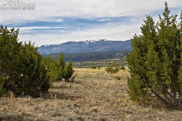 TBD Garrett Road, Beulah, CO 81023 (#8124609) :: The Daniels Team