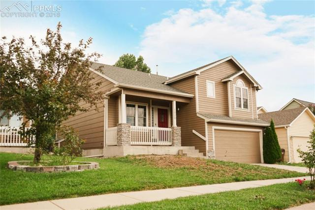 6020 Grapevine Drive, Colorado Springs, CO 80923 (#8125970) :: The Dunfee Group - Keller Williams Partners Realty