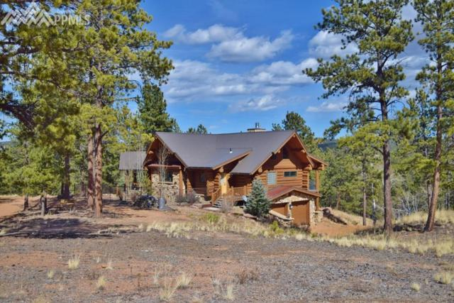 2216 County 46 Road, Florissant, CO 80816 (#8128627) :: Action Team Realty