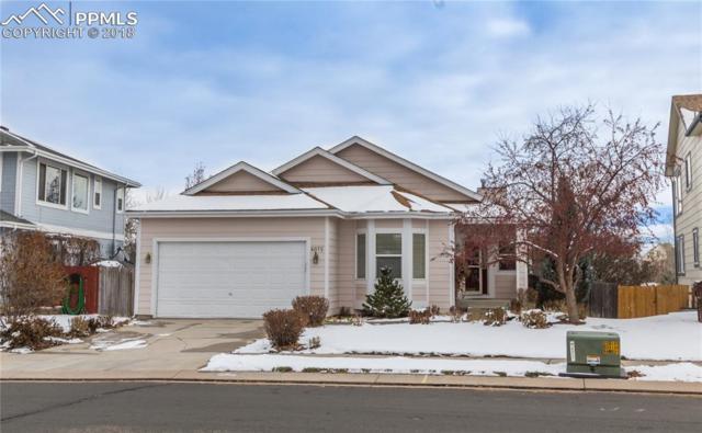 6075 Fescue Street, Colorado Springs, CO 80923 (#8128942) :: Venterra Real Estate LLC