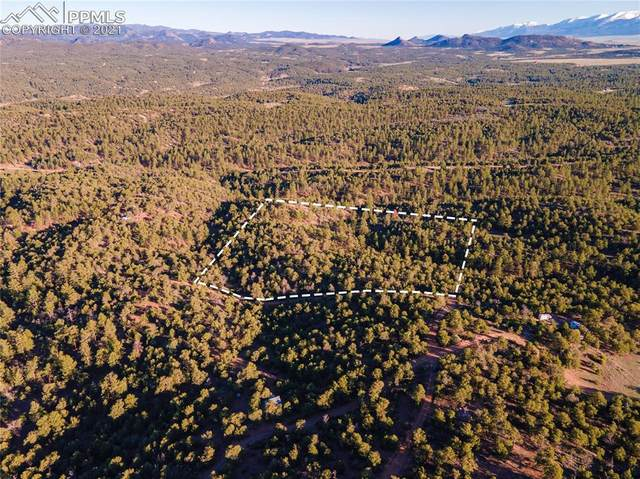 00 42nd Trail, Cotopaxi, CO 81223 (#8130501) :: Tommy Daly Home Team