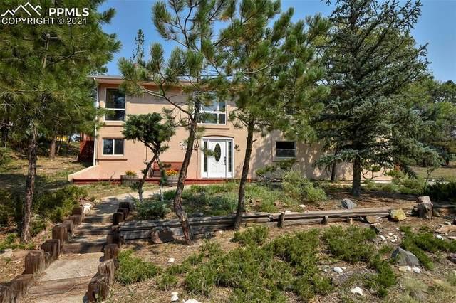 7633 Thunderbird Lane, Colorado Springs, CO 80919 (#8130882) :: The Harling Team @ HomeSmart