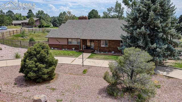 7618 Windwood Way, Parker, CO 80134 (#8131831) :: Action Team Realty