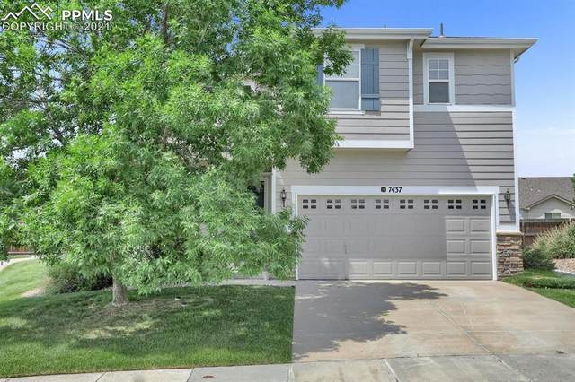 7437 Forest Falcon View, Colorado Springs, CO 80922 (#8134748) :: Fisk Team, eXp Realty
