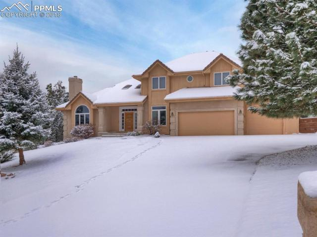 2585 Tamora Way, Colorado Springs, CO 80919 (#8139479) :: Harling Real Estate