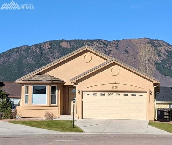 2236 Creek Valley Circle, Monument, CO 80132 (#8140254) :: Action Team Realty