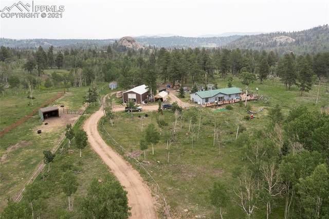 280 Elk View Road, Florissant, CO 80816 (#8145661) :: Compass Colorado Realty
