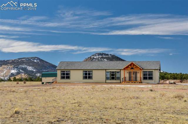 1925 Doe Valley Road, Guffey, CO 80820 (#8148805) :: Fisk Team, RE/MAX Properties, Inc.