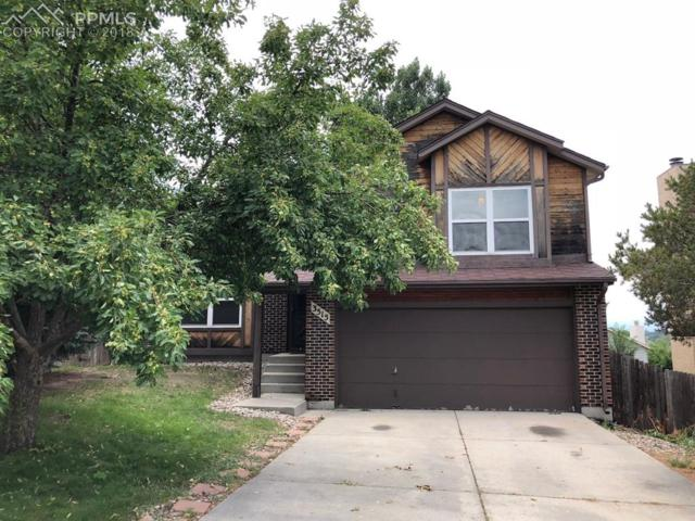 3515 Sedgewood Way, Colorado Springs, CO 80918 (#8149421) :: 8z Real Estate