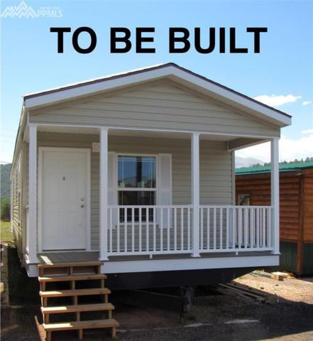 27572 Highway 67 Highway, Woodland Park, CO 80863 (#8152930) :: Harling Real Estate