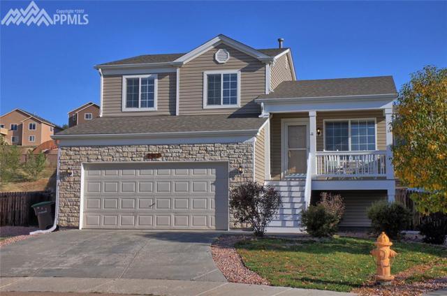 7917 Brocket Lane, Fountain, CO 80817 (#8157015) :: 8z Real Estate