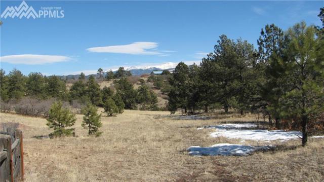 1305 Apache Trail, Florissant, CO 80816 (#8163004) :: Jason Daniels & Associates at RE/MAX Millennium