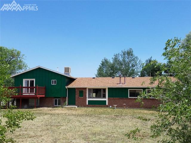 10915 Thunderhead Drive, Colorado Springs, CO 80925 (#8164897) :: Fisk Team, RE/MAX Properties, Inc.