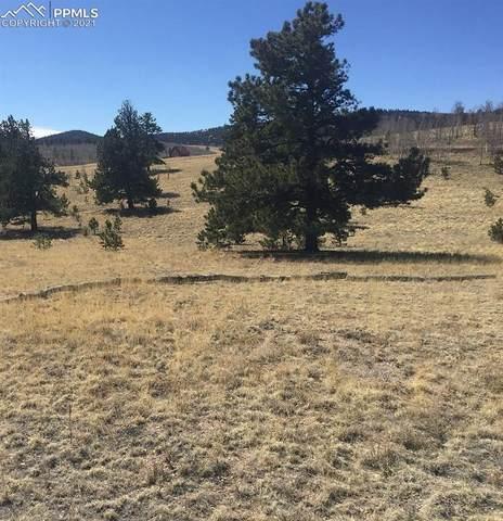 381 Brahma Circle, Hartsel, CO 80449 (#8169889) :: Symbio Denver