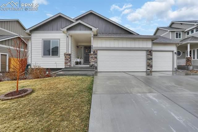 9875 Rubicon Drive, Colorado Springs, CO 80925 (#8170080) :: The Kibler Group