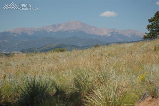 960 Elkton Drive, Colorado Springs, CO 80907 (#8170825) :: 8z Real Estate