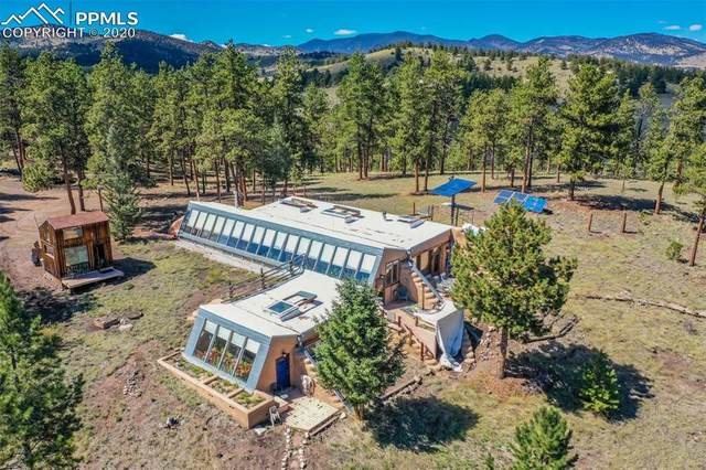 654 Tess Trace Road, Guffey, CO 80820 (#8174831) :: 8z Real Estate