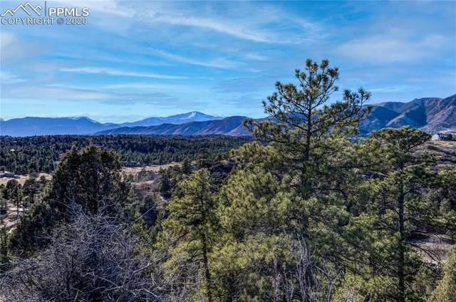 225 Northfield Road, Colorado Springs, CO 80919 (#8183958) :: CC Signature Group