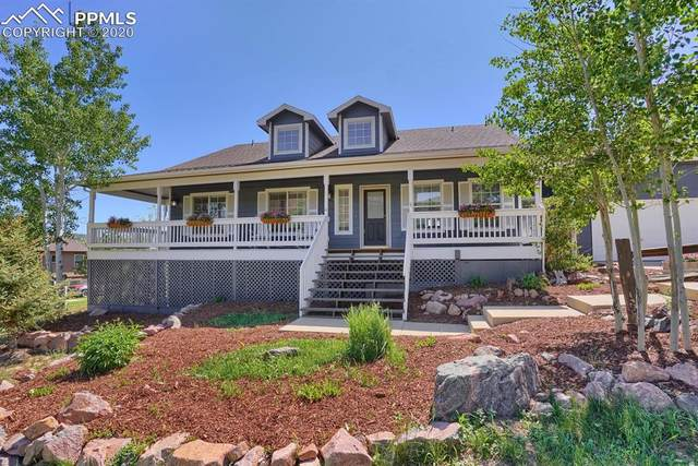 703 Platt Lane, Palmer Lake, CO 80133 (#8189582) :: 8z Real Estate
