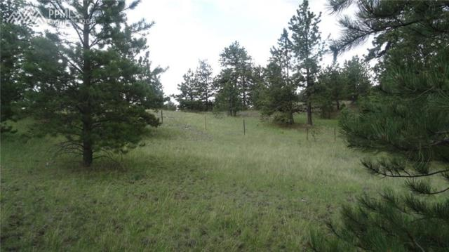 145 County 85 Road, Guffey, CO 80820 (#8192594) :: 8z Real Estate