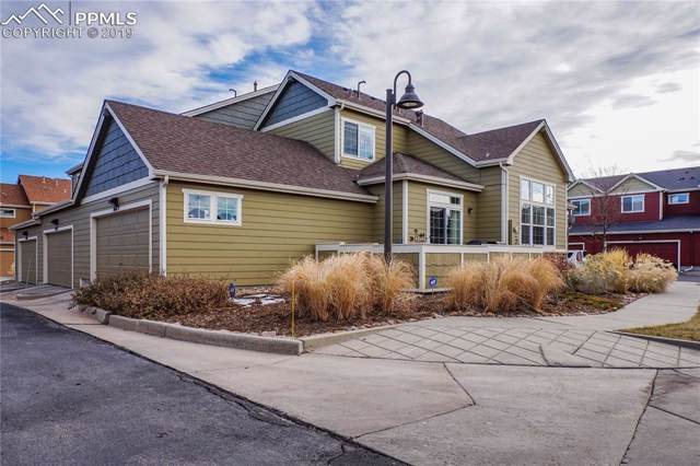 8679 Quinn Point, Colorado Springs, CO 80924 (#8192638) :: Tommy Daly Home Team