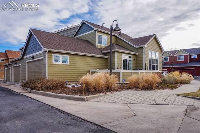 8679 Quinn Point, Colorado Springs, CO 80924 (#8192638) :: The Kibler Group