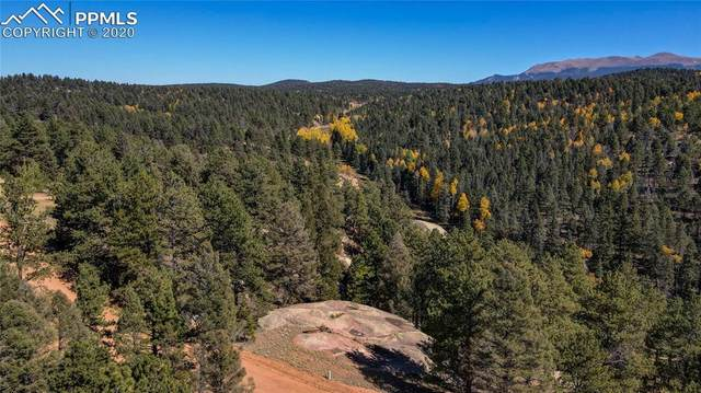 72 Huntsman Circle, Florissant, CO 80816 (#8192997) :: 8z Real Estate