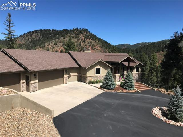 609 Crystola Court, Woodland Park, CO 80863 (#8195713) :: 8z Real Estate